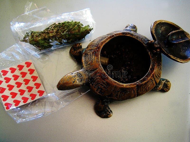 Legitimationshandlingar för pinne för Lsd-cannabis liten röd med tryck för en tapet för sköldpaddabakgrundsmakro fina arkivfoto