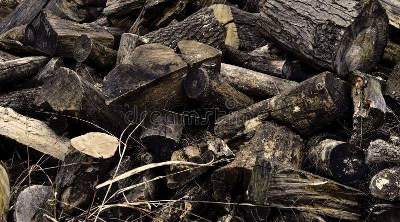 Legna da ardere, accatastata su per il legno di condimento, del pino e della locusta immagine stock