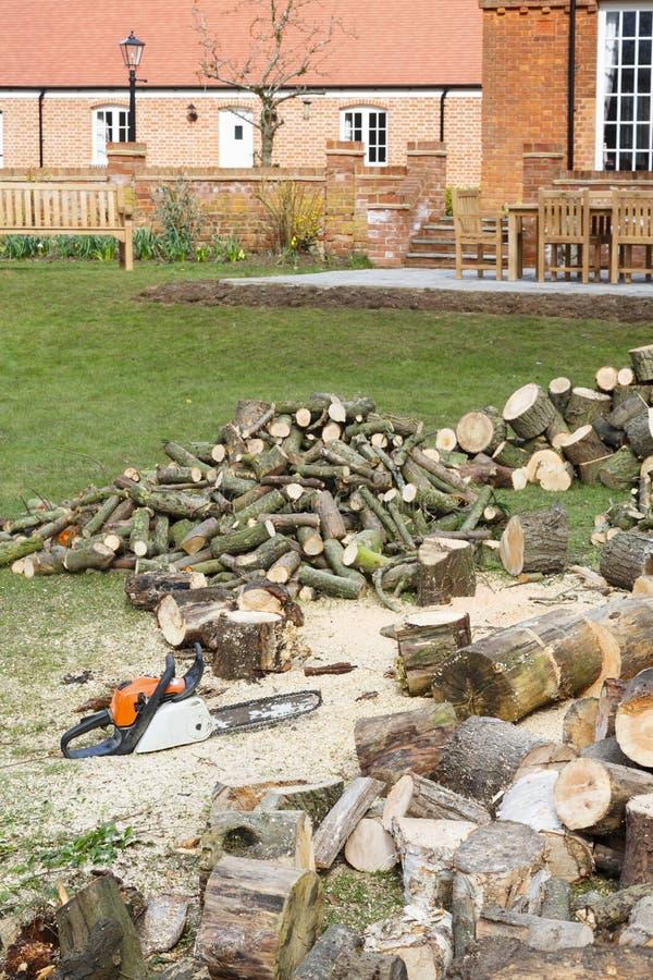Legna da ardere e motosega in un giardino immagine stock