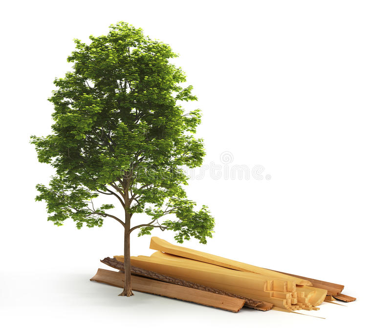Legname affettato dal ceppo vicino all'albero verde illustrazione di stock