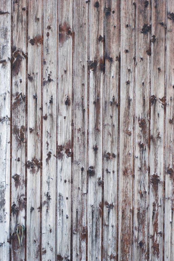 Legno bianco della plancia di lerciume immagine stock