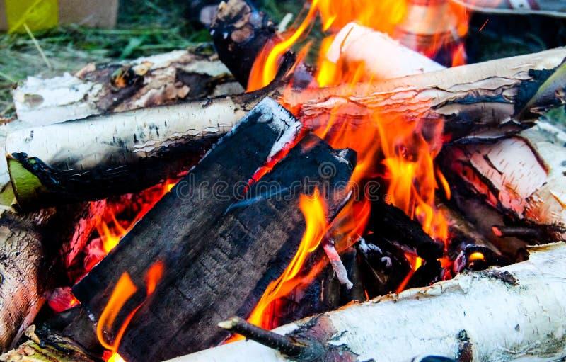 Legno bruciante nel fuoco fotografia stock libera da diritti