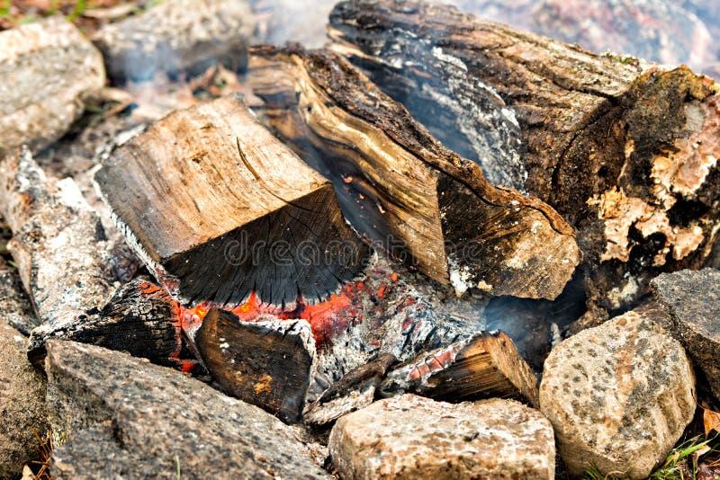 Legno bruciante in un pozzo del fuoco fotografia stock