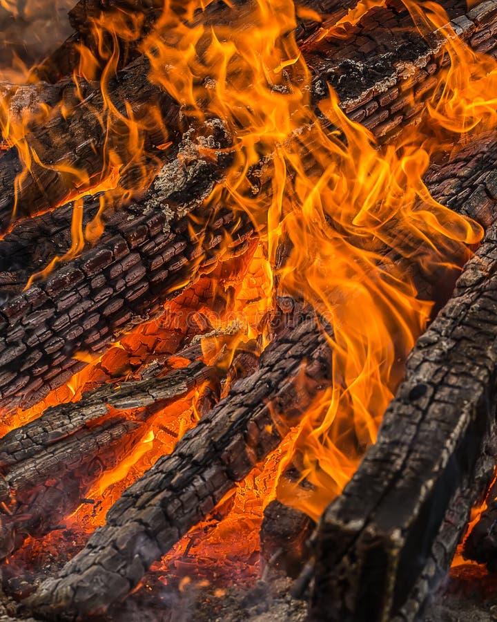 Legno Burning fotografia stock