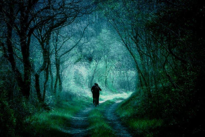 Legno di fantasia, siluette della gente su un sentiero nel bosco fotografie stock libere da diritti