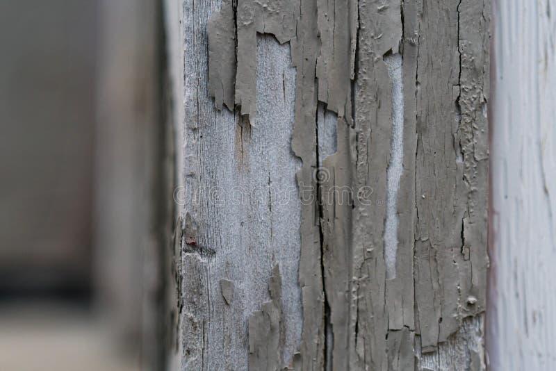 Legno di sverniciatura pallido esposto fotografia stock