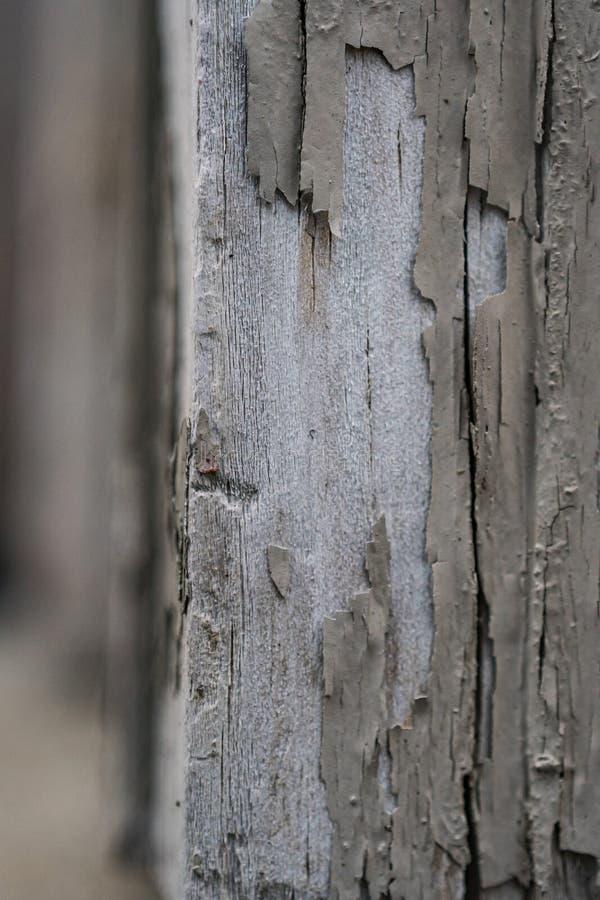 Legno di sverniciatura pallido esposto in verticale immagine stock libera da diritti