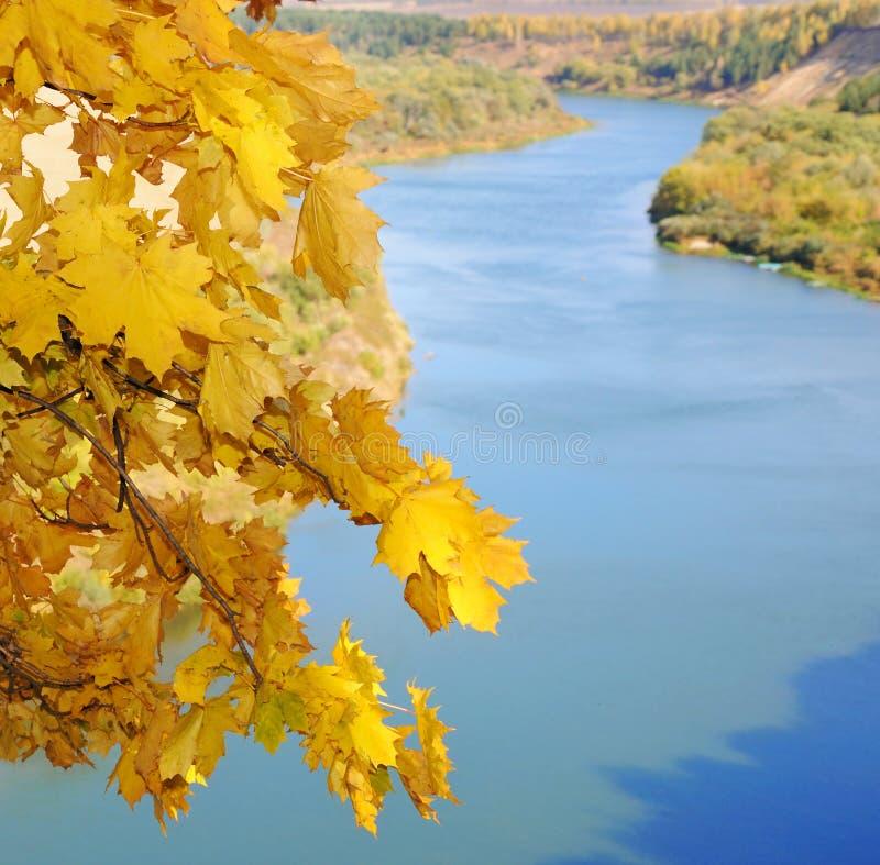Legno e fiume di autunno immagini stock libere da diritti