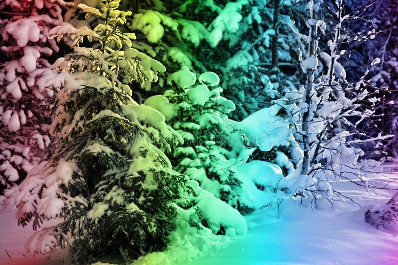 Legno nevoso di festa variopinta fotografia stock