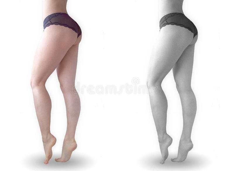 Download Legs stock image. Image of legs, fitness, perfect, beautiful - 15671831