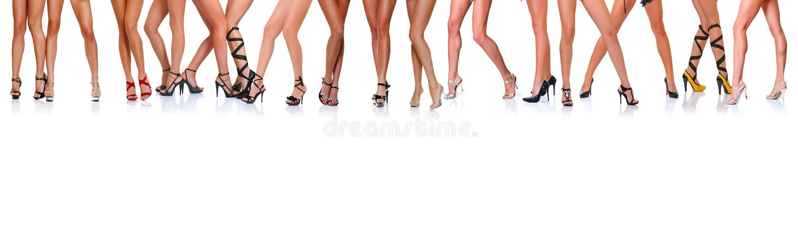 Legs royalty free stock photo