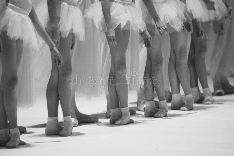 Legs dancers standing on the stage royalty free stock image