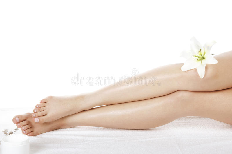 Legs and flower royalty free stock image