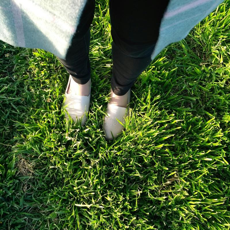 Legs in the grass stock images