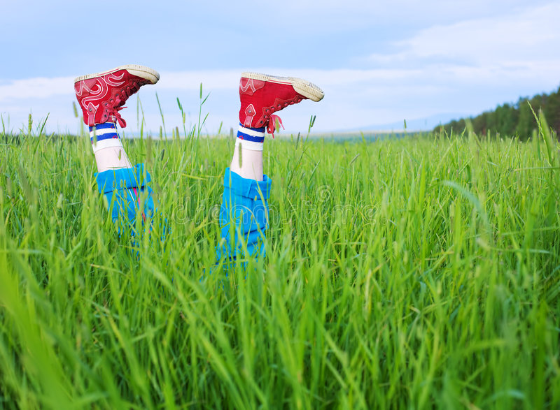 Legs, in a green grass. Under the blue sky stock photography