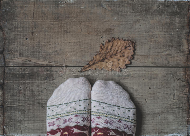 Legs in knitted woolen socks and oak leaf. Legs in knitted woolen warm socks and dry yellow oak leaf on wooden background stock photography