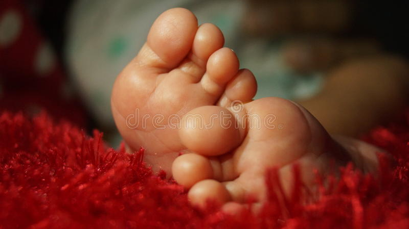 Sleeping Legs in Red Bed stock image