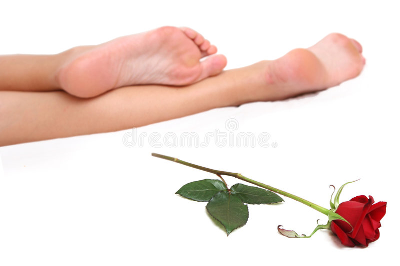 Legs and Rose stock photos