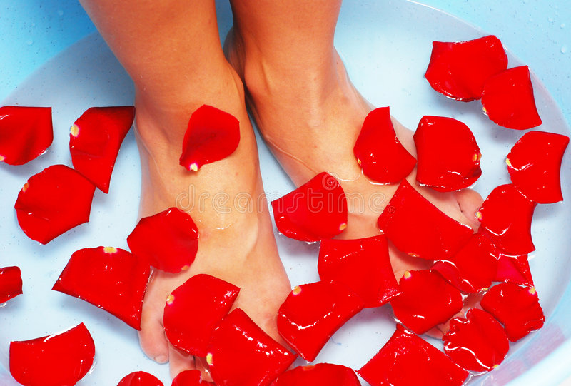 Legs in water. With flower petals stock photography
