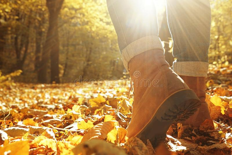 Legs of woman walking in autumn park stock images