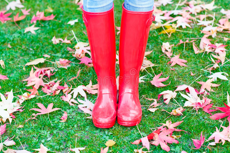Legs of young woman in red rainboots. stock images