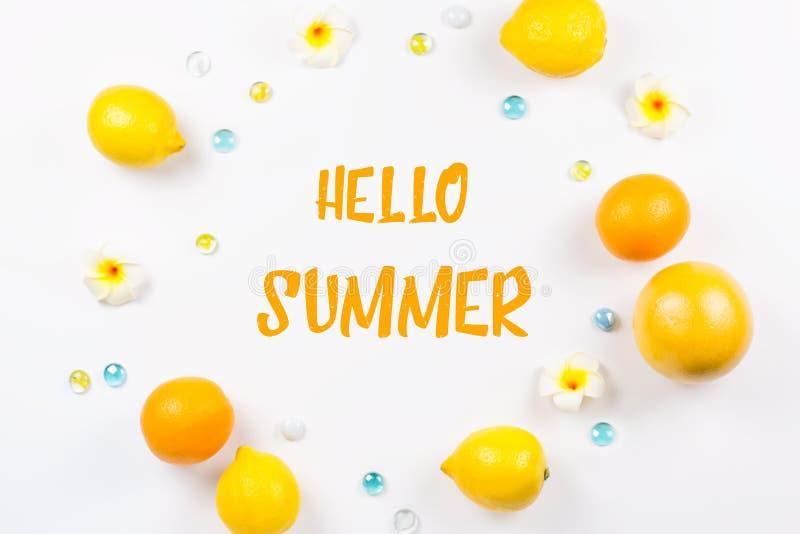 Legt de de zomer tropische vlakte met citrusvruchten en bloemen Tropisch de zomerconcept, strandbestemming vector illustratie