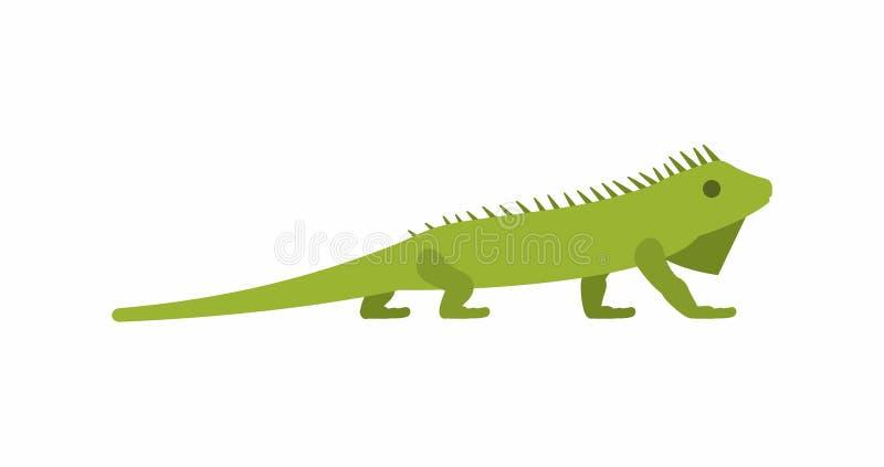 Leguan stock illustrationer