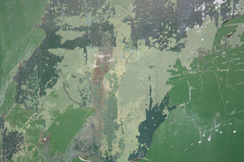 Leguan - Reptilhaut Alte Farbe auf Betonmauerbeschaffenheitshintergrund Schablone f?r Entwurf lizenzfreie stockfotos