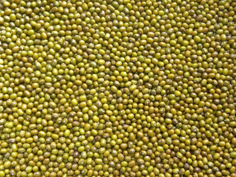 Legumbre entera verde de las habas de Mung fotos de archivo