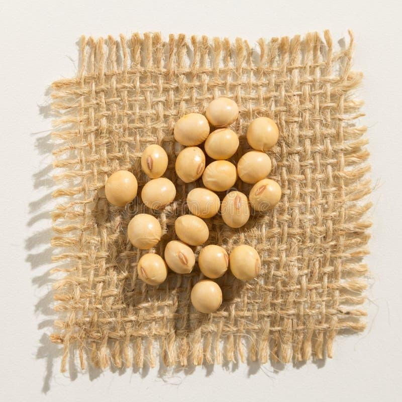 Legume della soia Chiuda su dei grani sopra tela da imballaggio fotografia stock