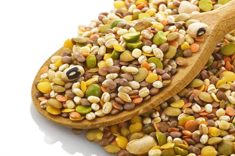 Legumes royalty free stock image