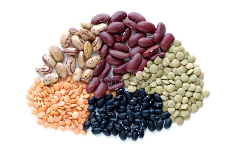 legumes стоковые изображения rf