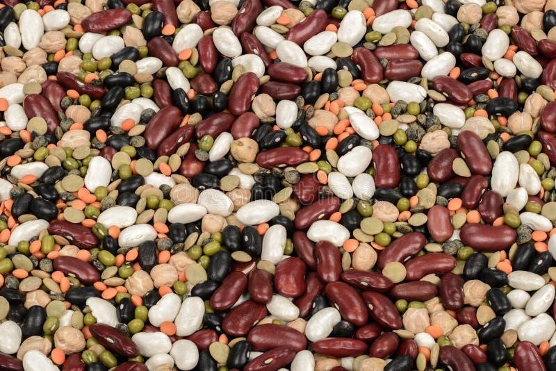 legumes стоковая фотография