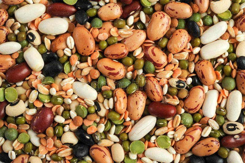 Legumes beans for background. And texture royalty free stock images