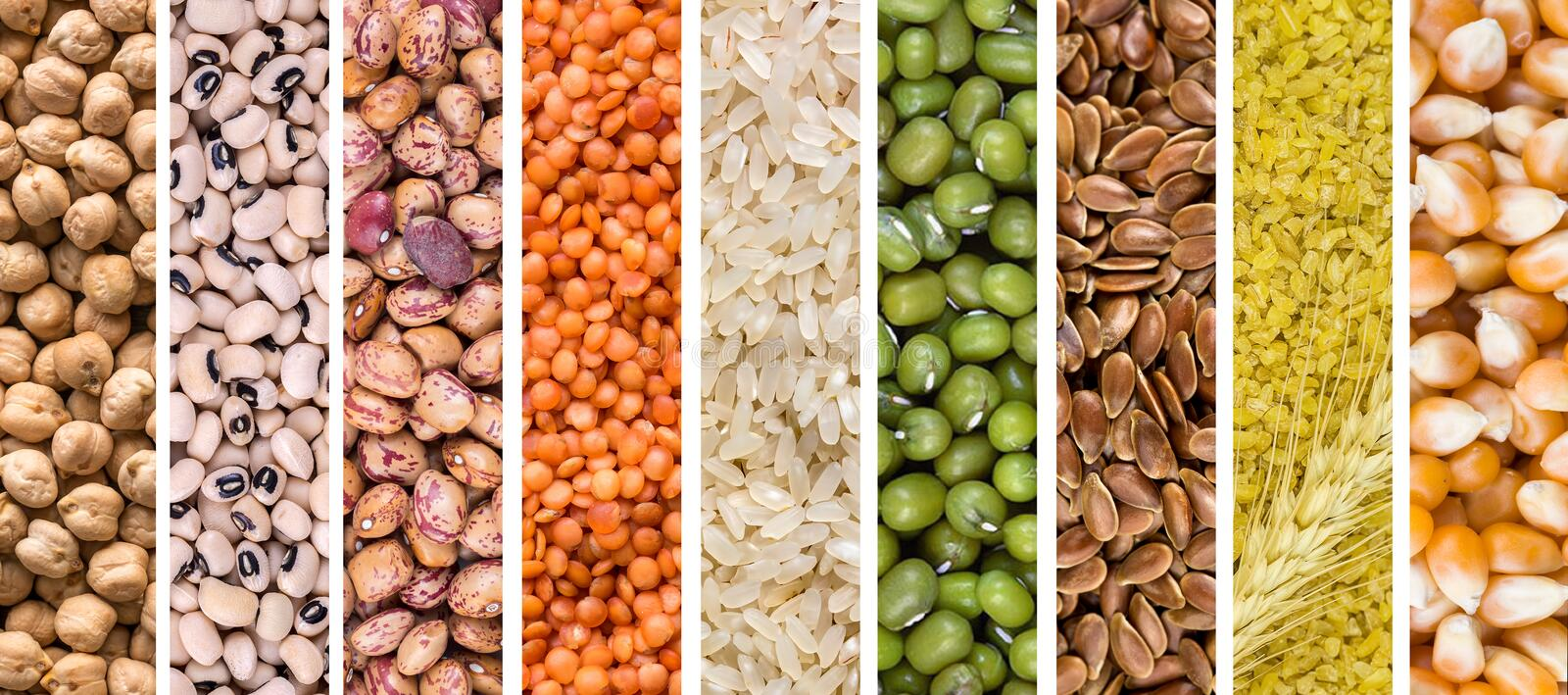 Legumes collage. The legumes bean seed in sack, top view stock photos