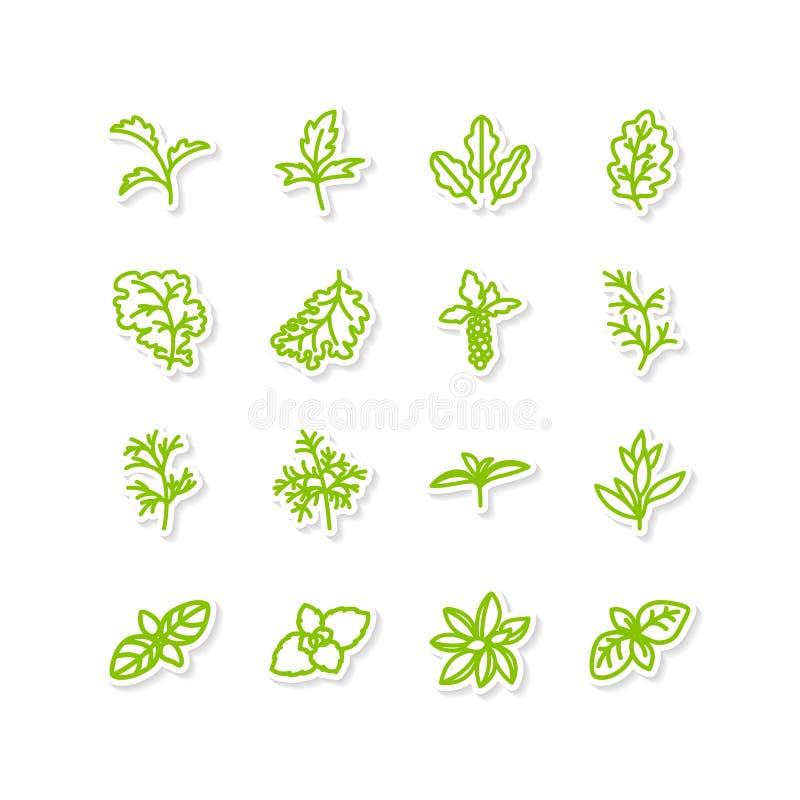 Legumes com folhas ilustração royalty free