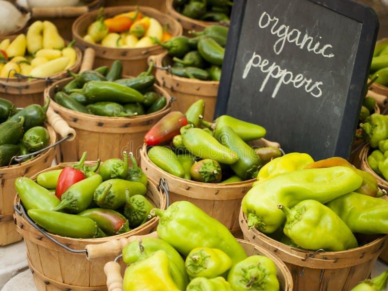 Download Legumes frescos foto de stock. Imagem de rancho, comer - 26504252