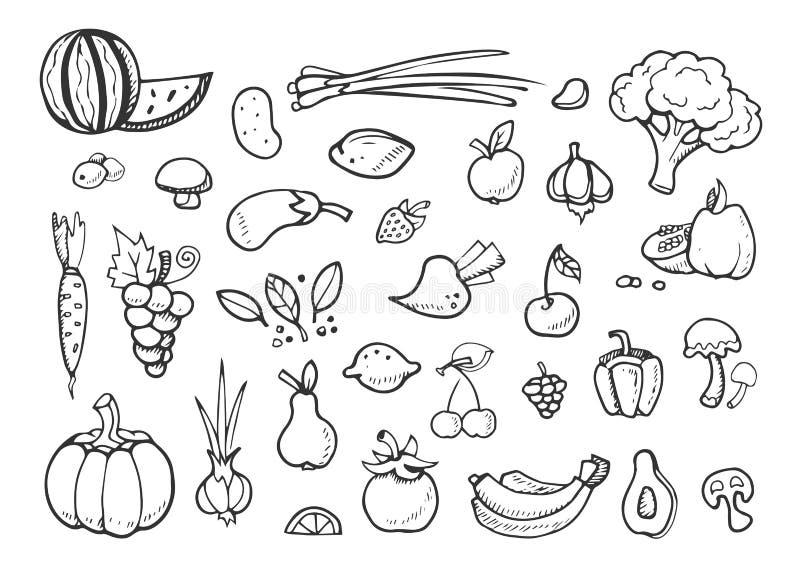 Legumes frescos e ícones da garatuja do vetor do fruto elementos tirados do menu comer mão saudável ilustração stock