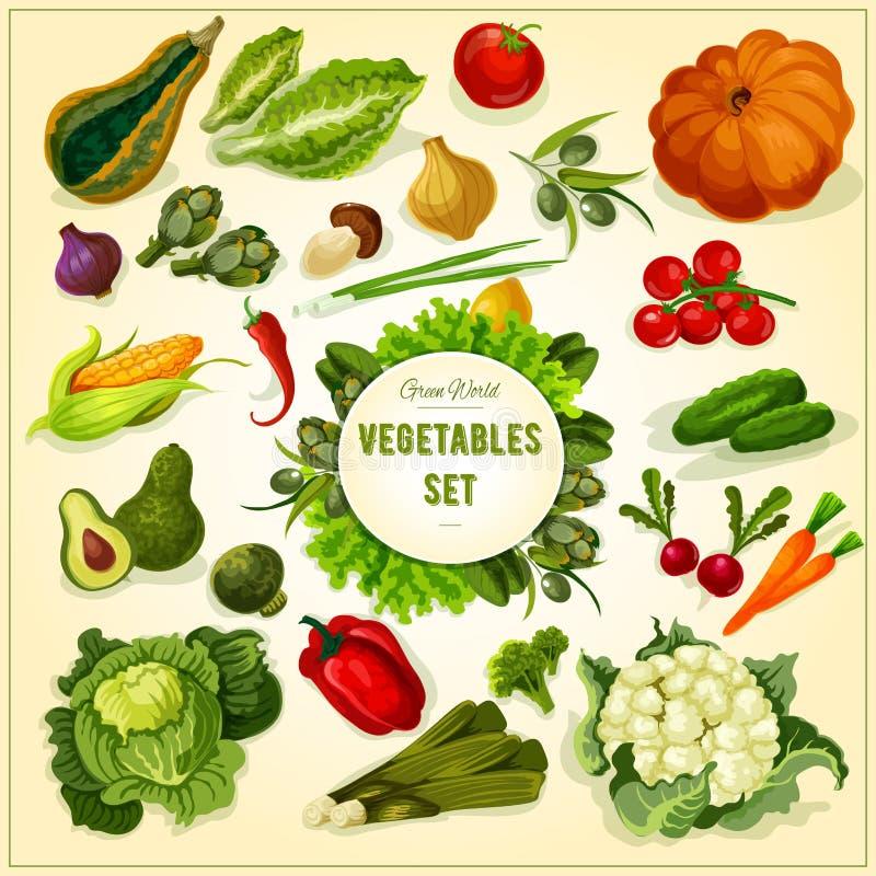 Legumes frescos e cartaz orgânicos das ervas ilustração stock