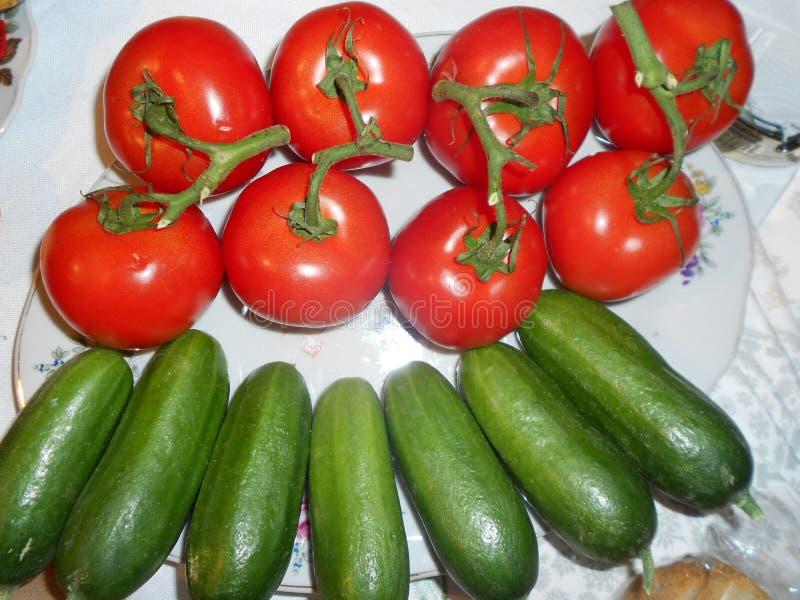 Legumes frescos: tomates e pepinos fotografia de stock royalty free