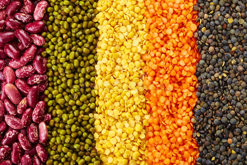 Legumes. Ranks of various legumes (red lentils, black lentils, yellow lentils, red beans, green mung beans) on white background stock images