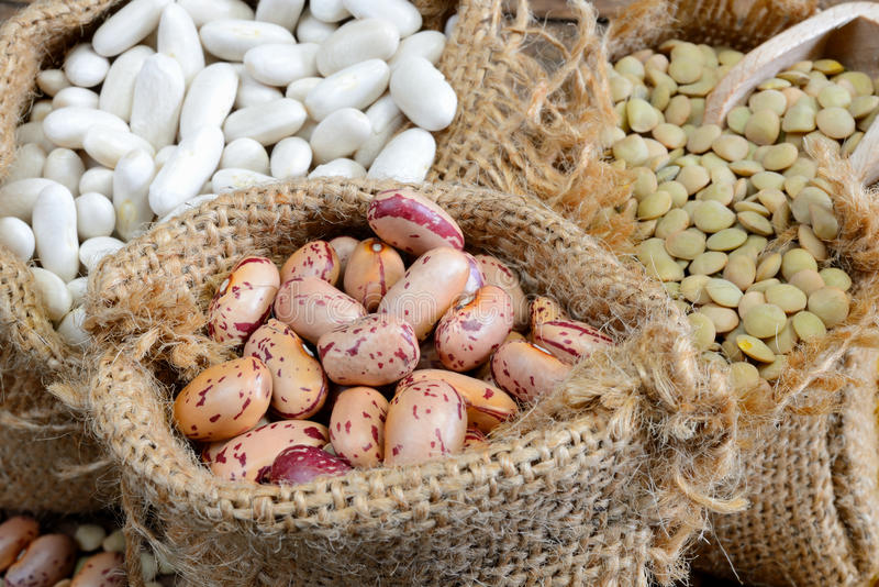 Legumes. Various legumes which lentils,red bean white bean stock photos