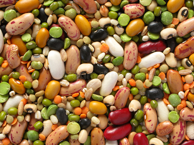 Legumi e cereali immagini stock libere da diritti