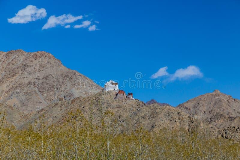 Leh宫殿和Namgyal Tsemo修道院, Leh,拉达克 免版税库存照片