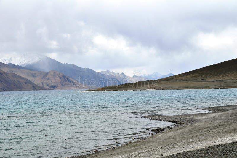Leh озера Pangong стоковые изображения rf