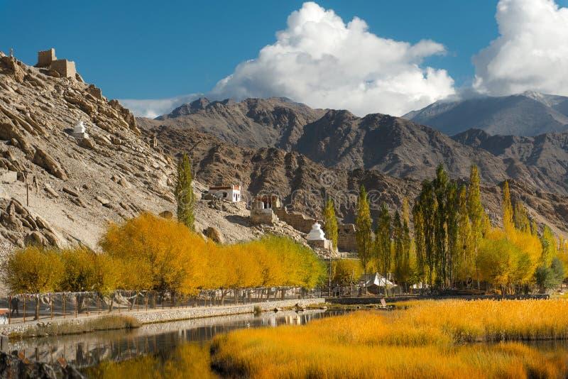 Leh Ladakh stockfotos
