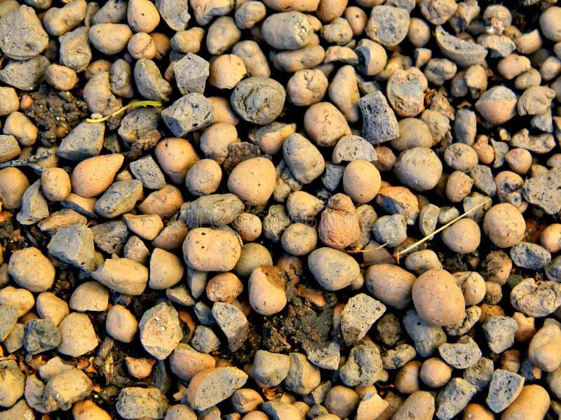 Lehm auf Erde stockfoto