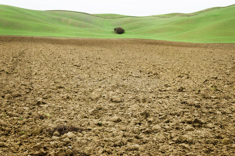 Lehmbodenfeld mit grünem Hintergrund in Toskana lizenzfreie stockbilder