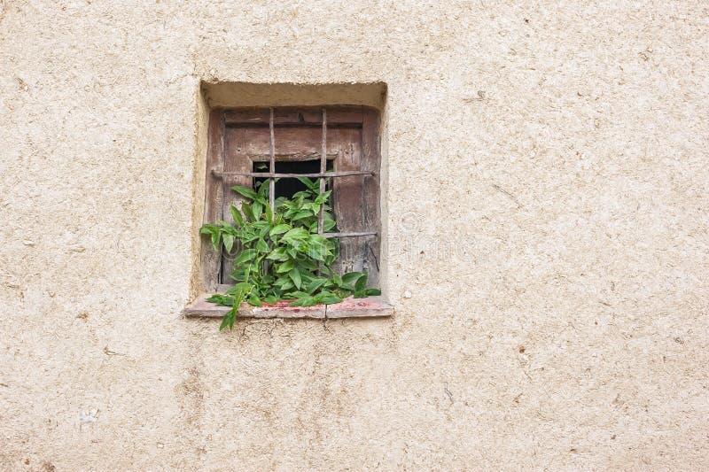 Lehmziegelmauer mit Fenster stockbild