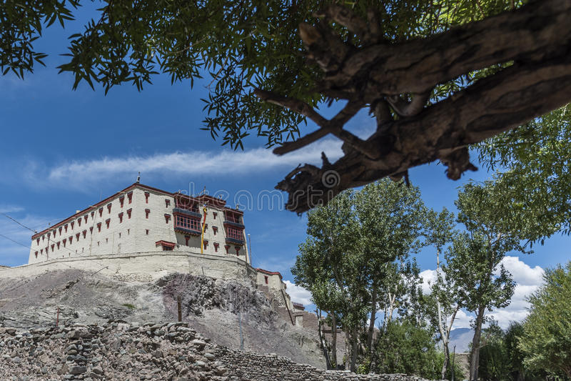 Lehpaleis en schors van een boom stock foto